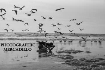 Photographic Mercadillo