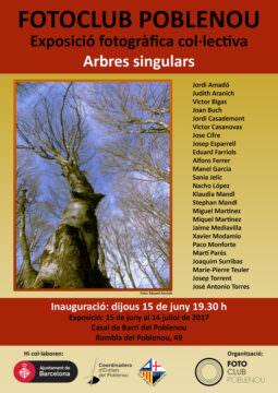 Fotos de l'exposició ARBRES SINGULARS
