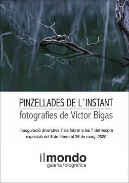 Exposició PINZELLADES DE L'INSTANT
